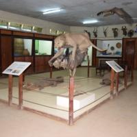 Kisumu Museum Exhibit.JPG