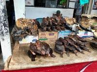 http://localhost/files/_import/Smoked and Dried Tilapia, Kisumu Municipal Market_MS_20180111.jpg